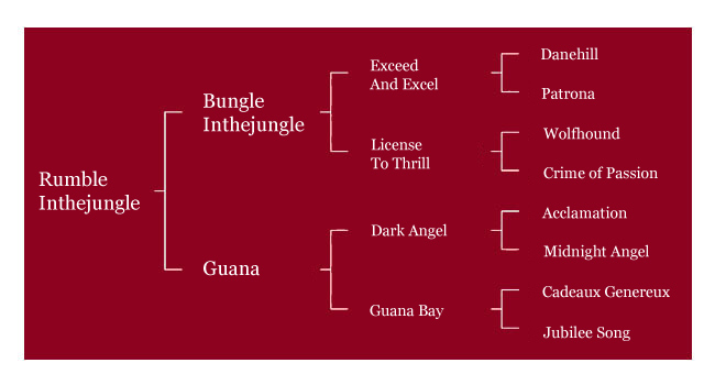 Rumble Inthejungle Pedigree